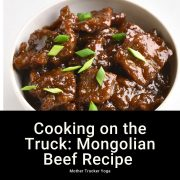 Mongolian Beef Recipe made in RoadPro Portable Oven Blog Post